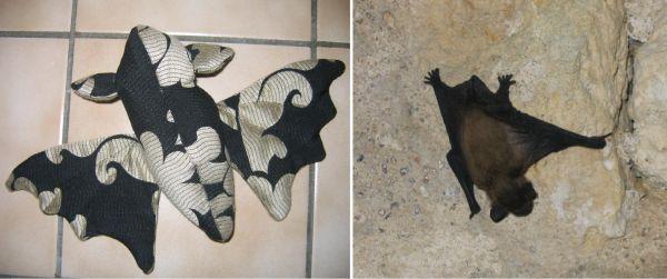 Bits and bats